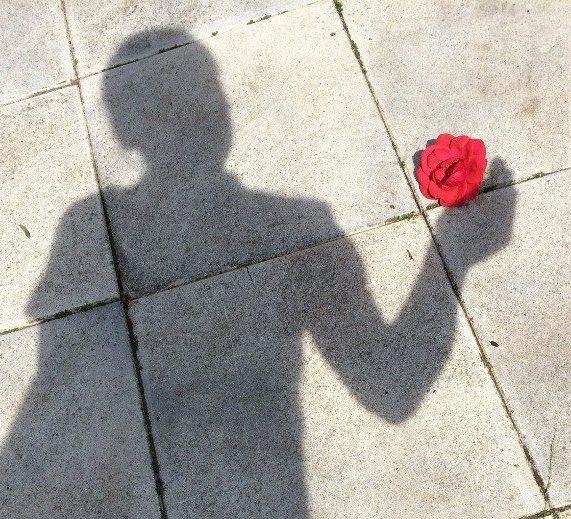 Schattenspiel mit Blume