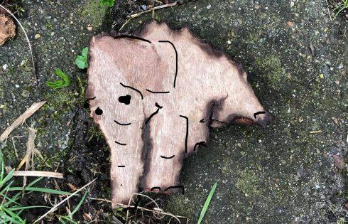 kleiner Elefant Baumrinde
