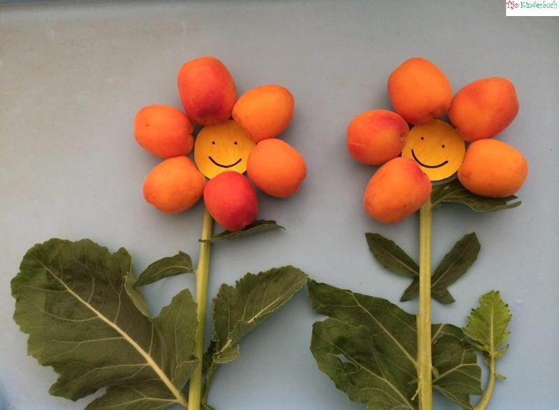 Aprikosenblumen