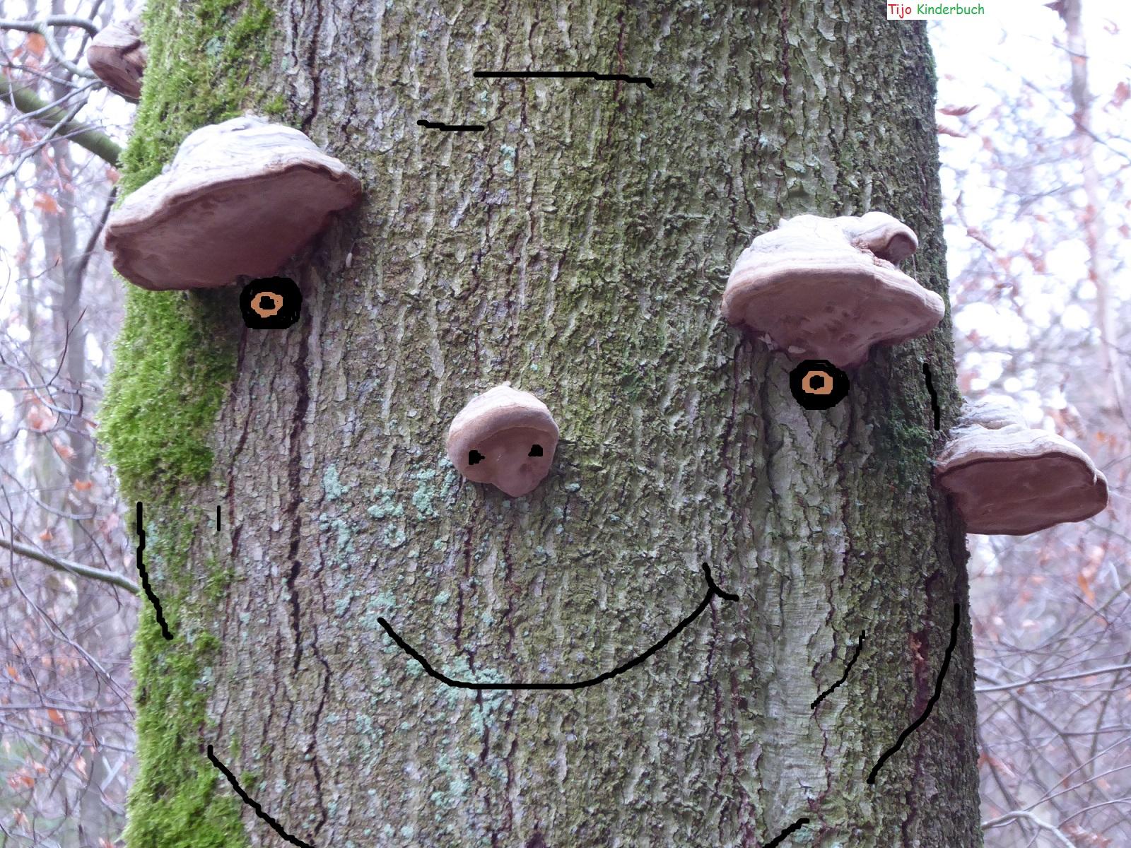 Treesmile, Baumlächeln