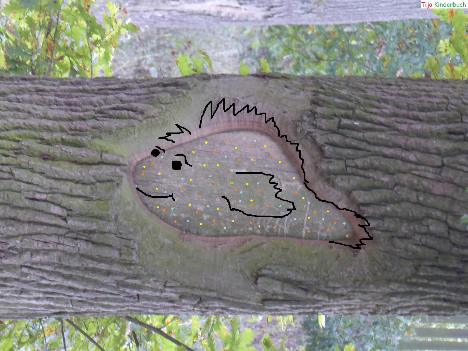 Baumfisch