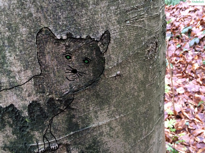 Baumkatze, tree cat