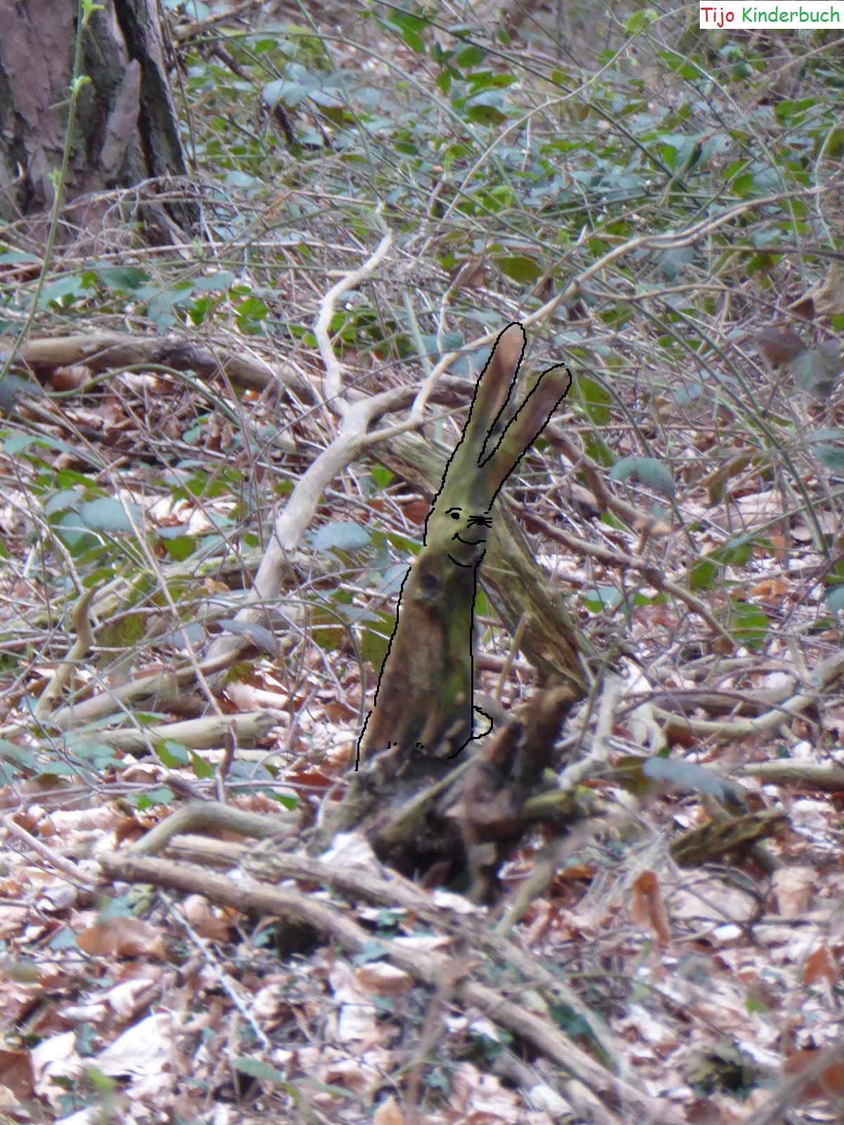 Baumstumpfhase