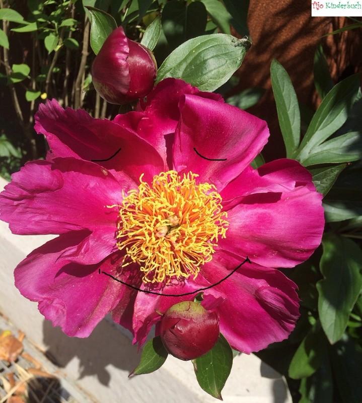 Blumengesicht