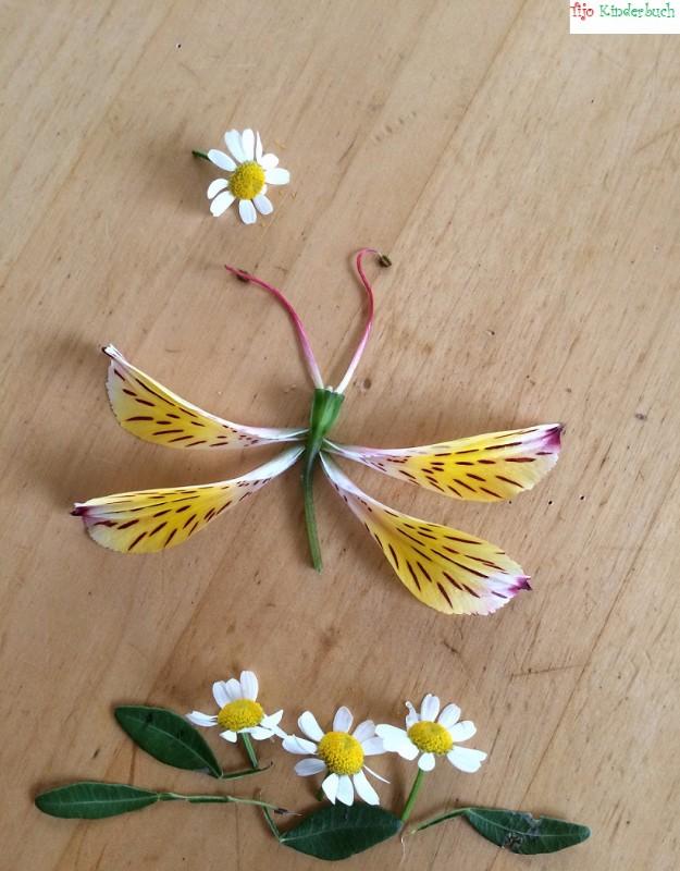Blumenschmetterling, flowerart