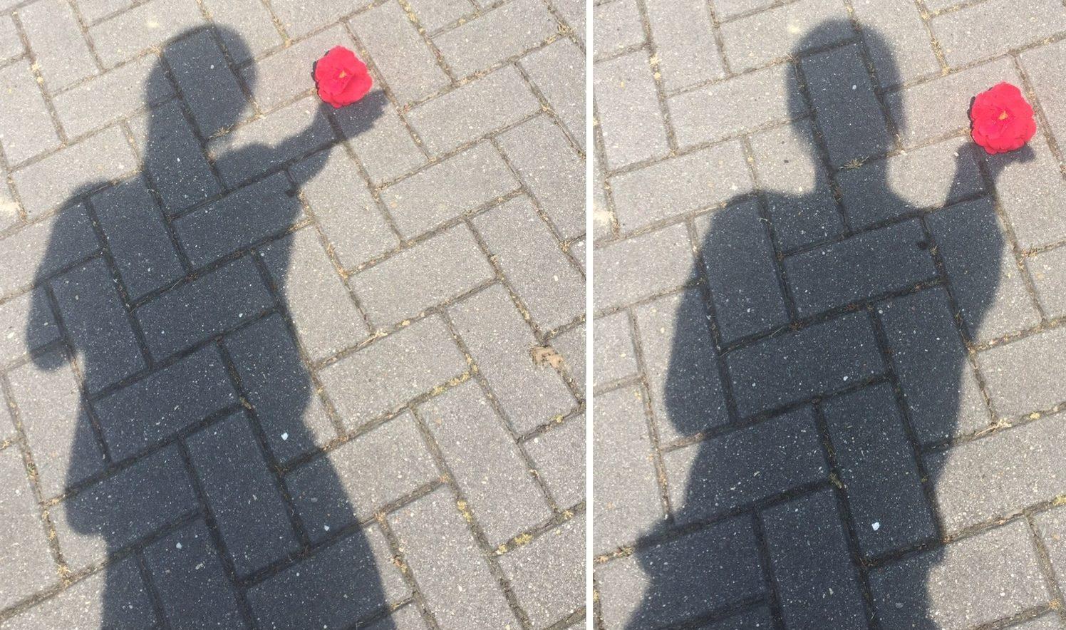 Schattenstory