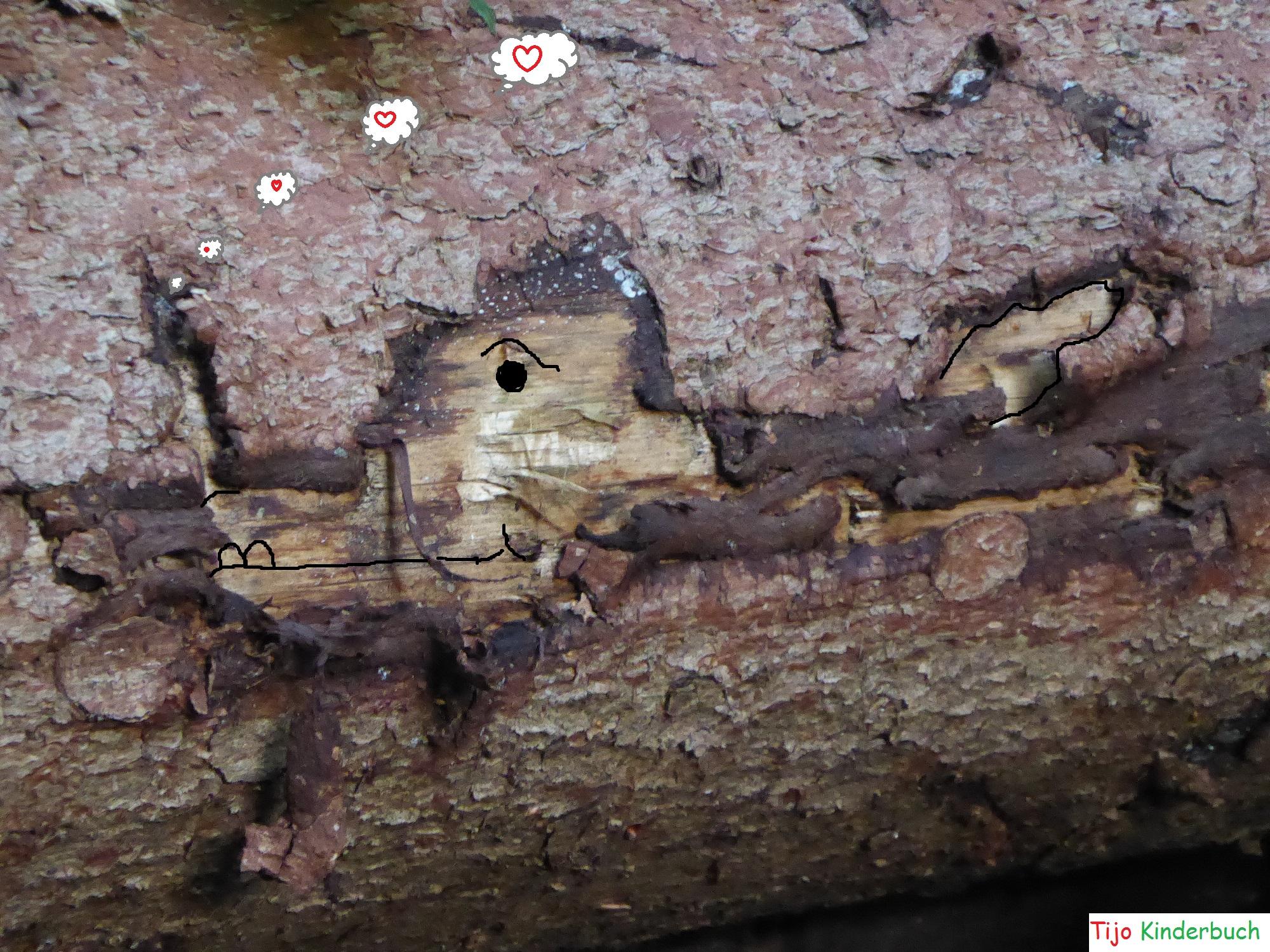 Baum Drache
