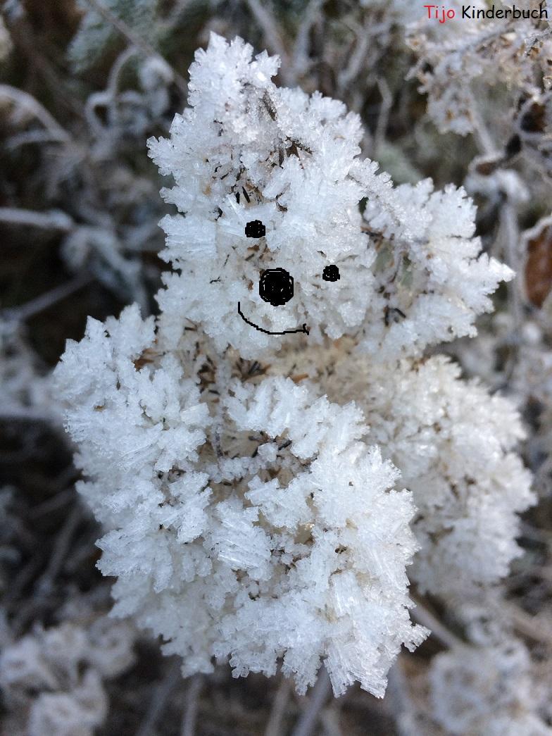 Icebear, Eisbär, snowart