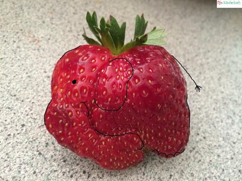 Erdbeerfant, fruitart