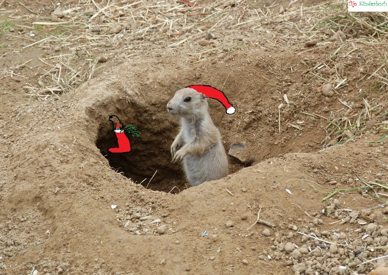 Nikolaus, wann kommst du?