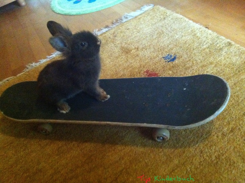skatebord bunny