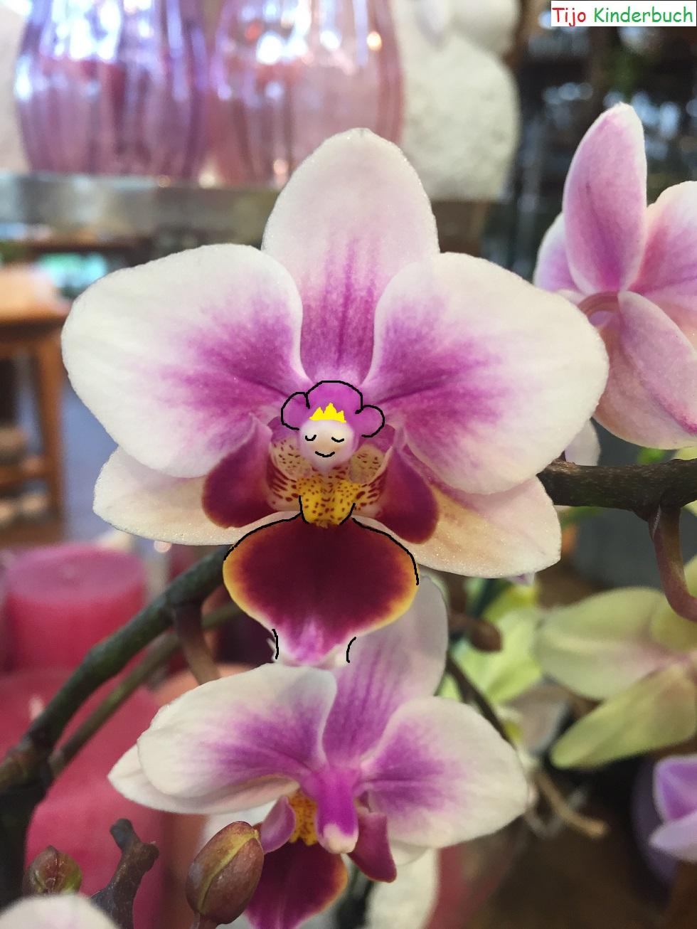 Blumenprinzessin