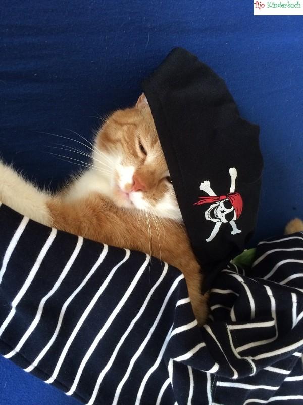 pirat cat, Piratenkatze