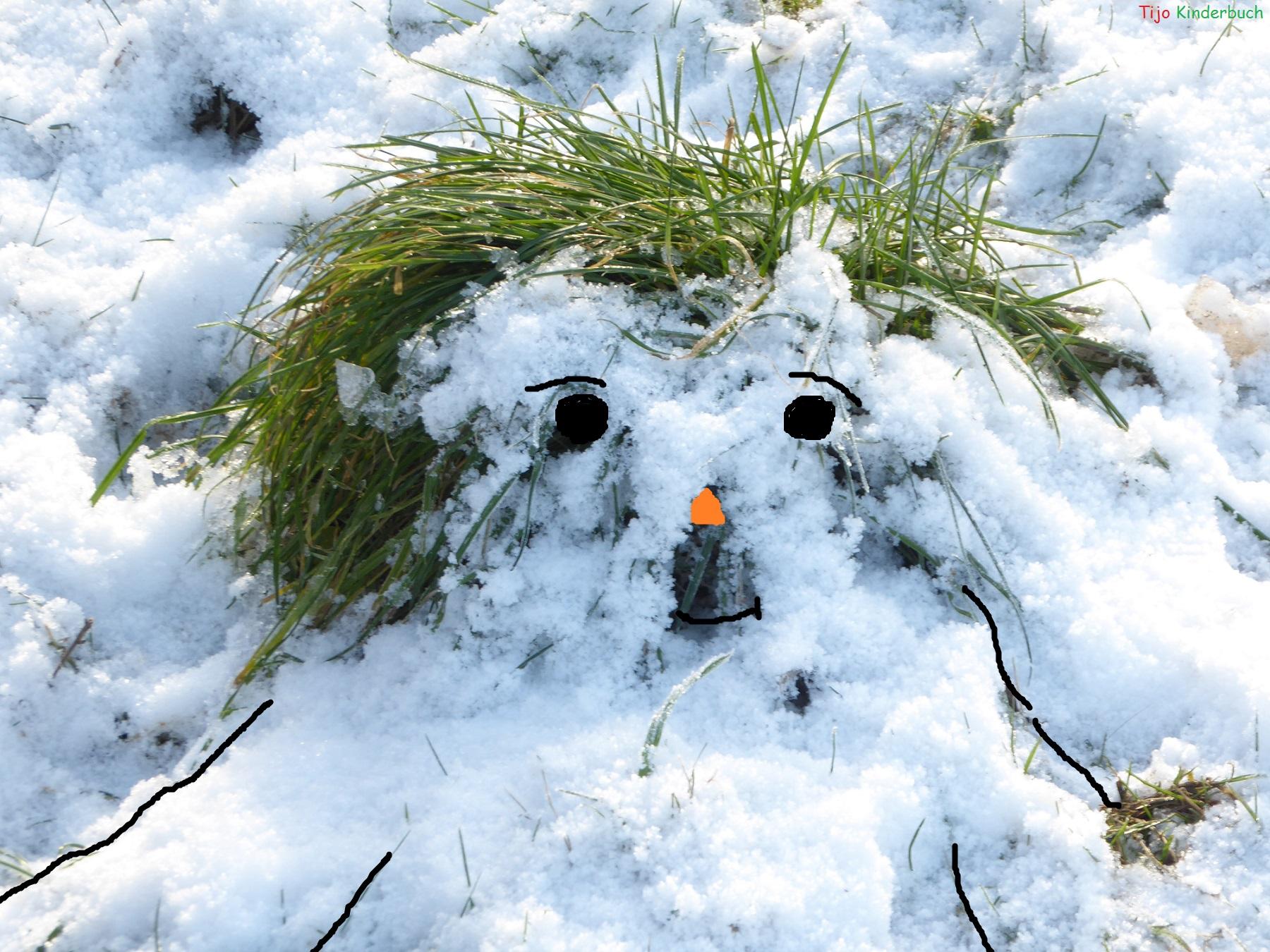 Schneekopf