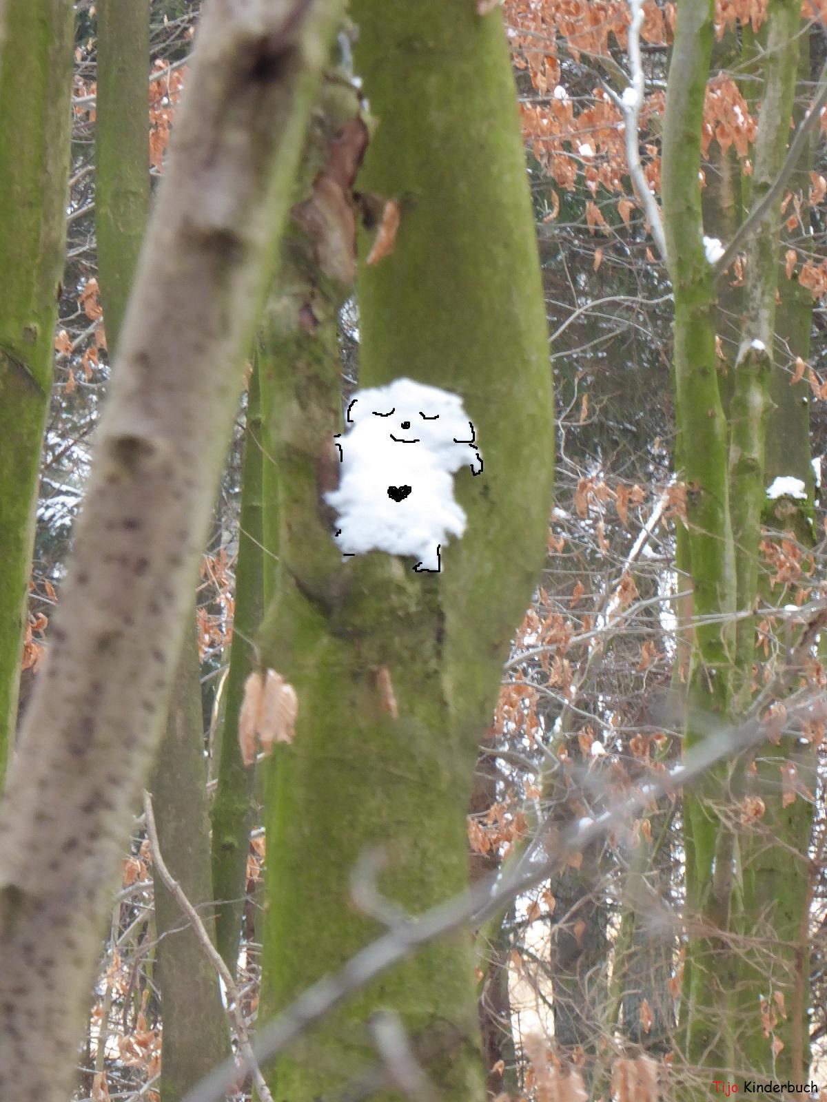Snowpokémon