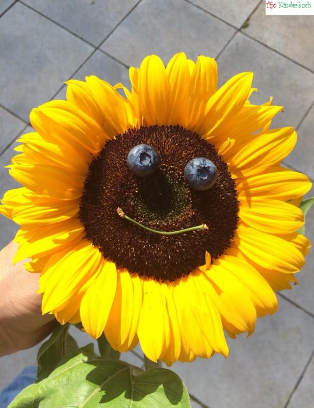 sunflower, summertime