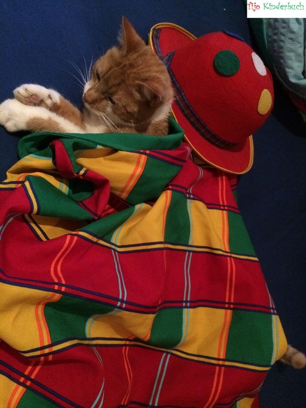Clown cat, Katzenclown