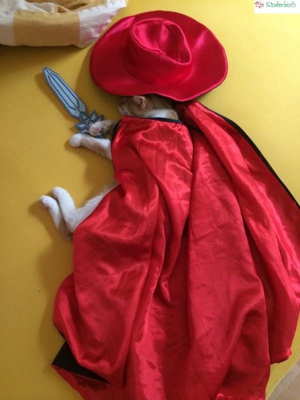 Zorro the cat