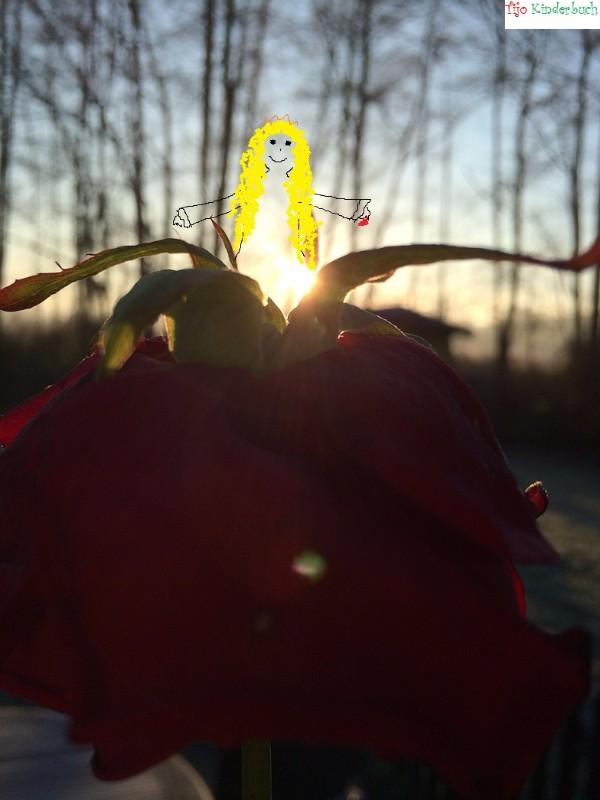 Blumenfee, take a wish