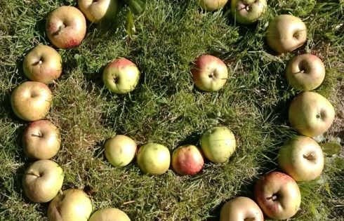 Apfelsmiley