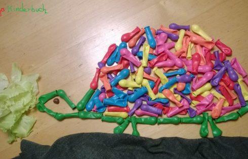 Ballonschildkröte, Turtle