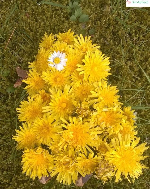 Blumenküken