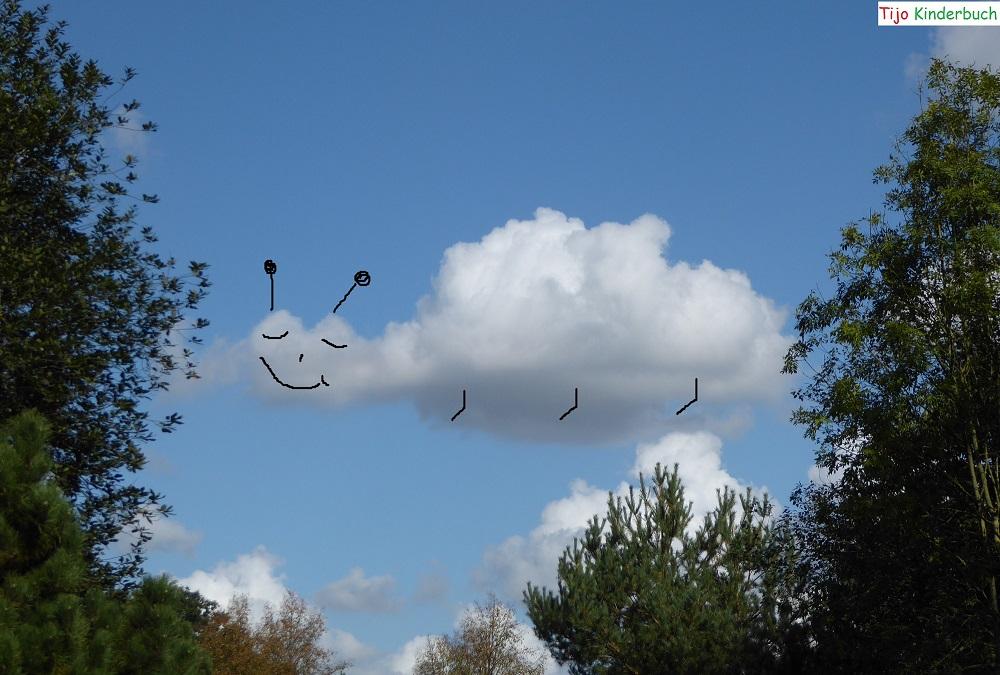 Wolkenkäfer