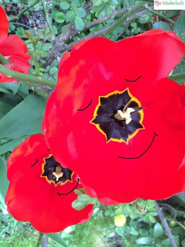 Tulpenlächeln