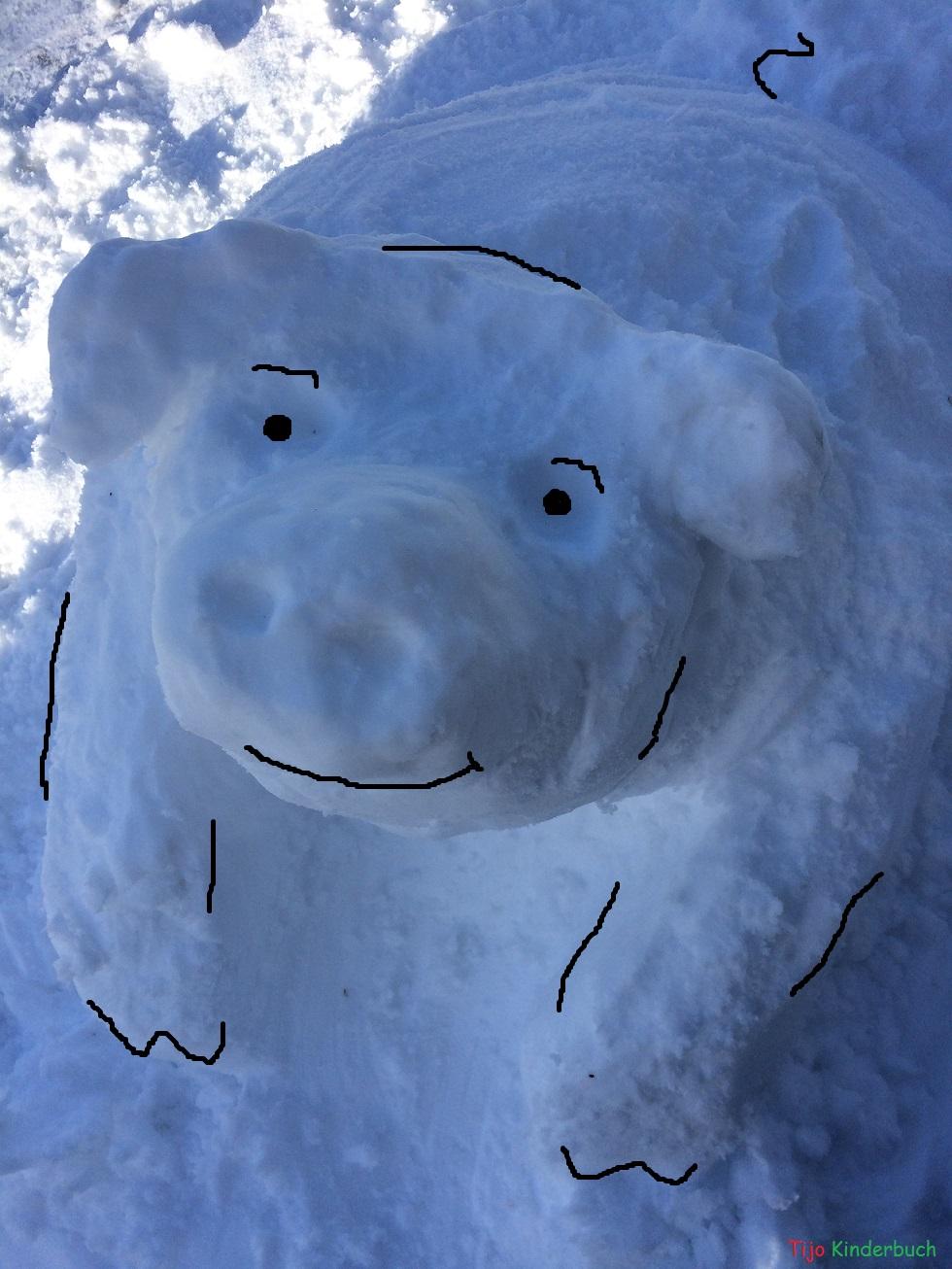 schneeschwein, saukalt